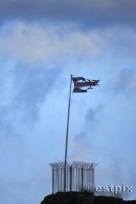 Raggedy Flag
